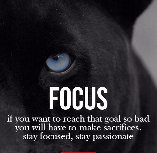 14d07d2cf4538d5192f78a7c0535ed6c--focus-quotes-fit-quotes